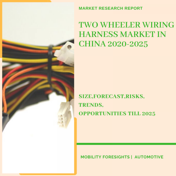 Two Wheeler Wiring Harness Market in China