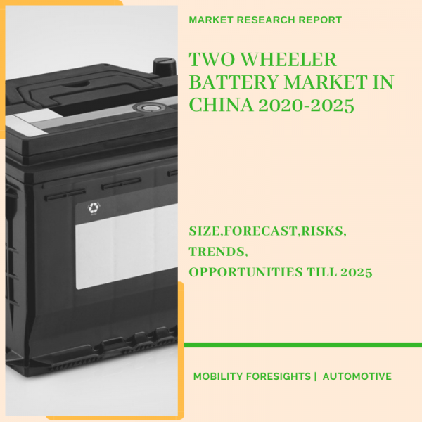 Two Wheeler Battery Market in China