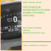 Two Wheeler Instrument cluster Market in China