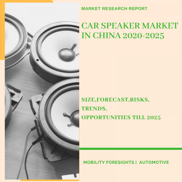 Car Speaker Market in China