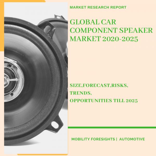 Car Component Speaker Market