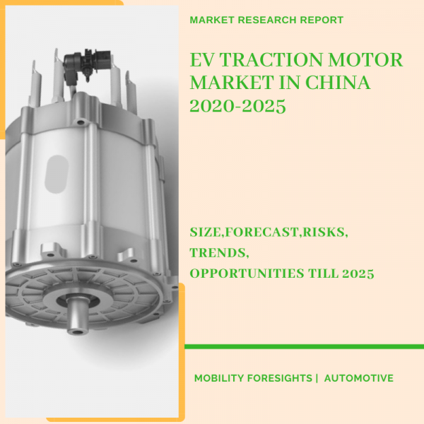 EV Traction Motor Market in China