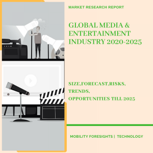 Media & Entertainment Industry