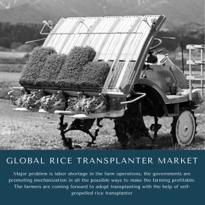 infographic:  Rice Transplanter Market, Rice Transplanter Market size, Rice Transplanter Market trends, Rice Transplanter Market forecast, Rice Transplanter Market Market risks,  Rice Transplanter Market Market report