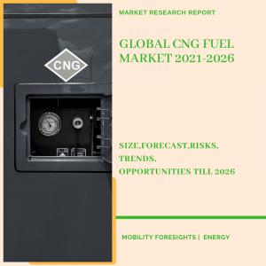 CNG Fuel Market