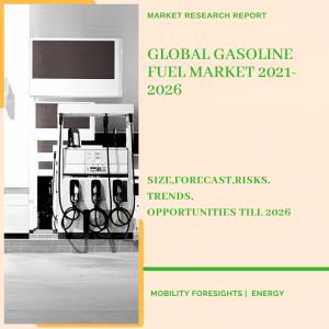 Gasoline Fuel Market
