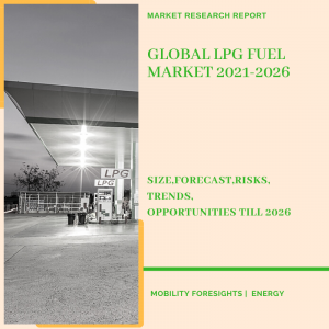 LPG Fuel Market