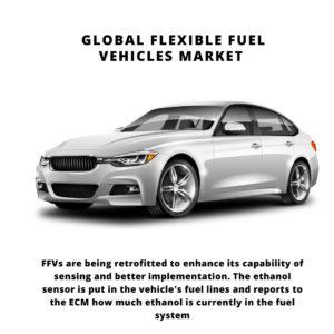 Flexible Fuel Vehicles Market, Flexible Fuel Vehicles Market Size, Flexible Fuel Vehicles Market Trends, Flexible Fuel Vehicles Market Forecast, Flexible Fuel Vehicles Market Risks, Flexible Fuel Vehicles Market Report, Flexible Fuel Vehicles Market Share